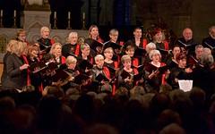 Concert de Noël du Madrigal de Nîmes au bénéfice du CEC du Gard - IMBF9864 (6franc6) Tags: cec cathédrale nîmes notredameetsaintcastor chorale concert orgue chant noël occitanie languedoc nîmes gard 6franc6 2019