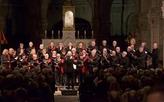 Concert de Noël du Madrigal de Nîmes au bénéfice du CEC du Gard - IMBF9861 (6franc6) Tags: cec cathédrale nîmes notredameetsaintcastor chorale concert orgue chant noël occitanie languedoc nîmes gard 6franc6 2019