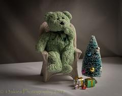Let's See (HTBT) (13skies) Tags: christmastree season merrychristmas christmas shopping gifts presents love wishes dreams teddybeartuesday htbt sitting thinking wishlist happyteddybeartuesday windowlight