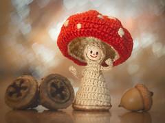 Amanita Mushroom (Carla Mountain Spirit) Tags: carlafreire acorn amanitamuscaria bokeh crochet eucalyptusseedsbutton fungi hearts helios58mm macro miniature mushroom red macromondays