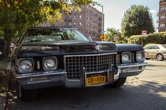 299/365 Cadillac Sedan de Ville