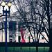 2019.12.01 Red Ribbon on White House, Washington, DC USA 336 01012