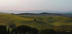 I colori delle terre senesi (hmeyvalian) Tags: valdorcia siena canoneosm5 efm18150mm iso100 f11 1160s 50mm italia italy italie toscana toscane toscany bestimagesofitaly