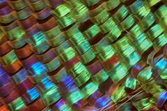 Sunset Moth Scales #1 (Macro Cosmos Microscopy) Tags: mitutoyo mplan apo 20x macro micro photomacrography nikon d810 thorlabs stackshot zerenestacker focusstacking mitutoyomplan20xapo microscopy sunsetmoth