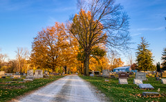 Autumn Arrives in Indiana (25) (tquist24) Tags: cemetery goshen hdr indiana nikon nikond5300 oakridgecemetery outdoor autumn color colorful fall geotagged graveyard lawn outside road sky tombstone tree trees