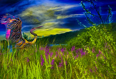 Big Bird in the Refuge (Rusty Russ) Tags: flowers sky color bird reeds colorful flock googy world blue sunset red white colour tree green nature digital america happy flickr day bright country scenic park new old light summer cloud sun art photoshop landscape yahoo google national getty geographic bing stumbleupon sunshine composite blog image artistic creative manipulation filter pixel hue wiki topaz on1 tinder reddit twitter comons pinterest timber unique unusual russ fascinating facebook seidel