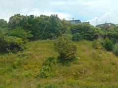 20191203-120645 (LSJHerbert) Tags: auckland castorbay forresthill geo:lat=3675718700 geo:lon=17476234400 geotagged newzealand nzl 20191203wtk viewranger historic housingdevelopment
