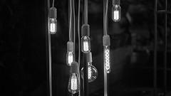 "Edison lamps for the festeve season (Bayandur ""Rhayader"" Pogosyan) Tags: christmas urbanphotography lighting monochrome yerevan armenia blackandwhite"