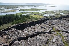 Rift between Eurasian and North American Plates. Thingvellir National Park (Tom Trippe) Tags: iceland thingvellirnationalpark iceland2019 eurasianplate northamericanplate