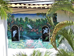 Bird Mural (knightbefore_99) Tags: mexico mexican rincon guayabitos west coast sun sunny sol cool awesome tropical pacific nayarit mural art painting bird