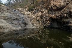 Cedar Creek Falls (agasfer) Tags: 2019 australia mttamborine pentax k3 sigma1020 waterfalls