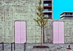 de gele strip is terug (roberke) Tags: architecture architectuur modern beton concrete deuren doors tree boom street straat wall muur antwerp antwerpen belgium belgie