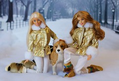 Playing in the Snow (Annette29aag) Tags: barbie doll dollphotography fashionista madetomove fashion annette29aag