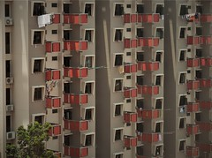 repetitive housing (SM Tham) Tags: asia southeastasia singapore rochor flats apartments repetitive building facade windows poles laundry clothes life living