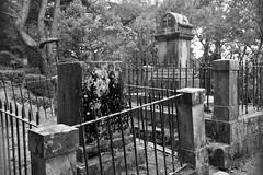 cementerio de los ingleses (gabrielg761) Tags: cementerio tumba donosti san sebastian ingleses historia
