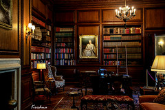 Library at FILOLI (krishna.mgs) Tags: library architecture victorian lowlight