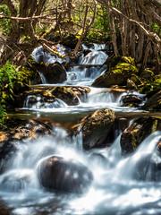 Birralee Bushcamp (Joel Bramley) Tags: long exposure water creek stones park nature outdoors landscape river trees nsw australia kosciuszko