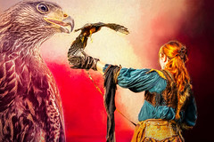 The Art Of Falconry (Wes Iversen) Tags: htt holly michigan michiganrenaissancefestival nikkor18300mm texturaltuesday birds composites falconry flying gloves hawks painterly people texture women