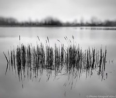 """Windless 