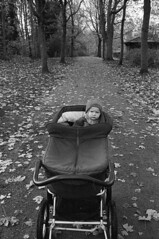 Minox 35 GL - på tur i parken (Lars_Holte) Tags: minox 35 gl colorminotar 28 35mm film rollei rpx 400 rpx400 400iso analog analogue blackandwhite classicblackwhite bw monochrome filmforever ishootfilm filmphotography kodak d76 homeprocessing larsholte denmark danmark walk park kid explored