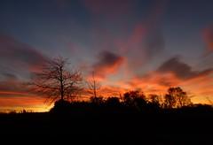 Good Morning!..x (Lisa@Lethen) Tags: sunrise morning weather nature scotland cloud sun trees garden outdoors