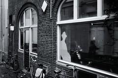Philip Marlowe's Shadow (RadarO´Reilly) Tags: privateeye silhouette window reflection backyard street utrecht nl netherlands bicycle sw bw schwarzweis blackwhite blanconegro monochrome noiretblanc zwartwit philipmarlowe marlowe