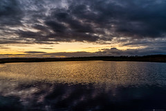 (CarolienCadoni..) Tags: sony ilcea9 clouds sky reflection reflections lake lofar exloo buinen nederland netherlands ngc light sundown sun