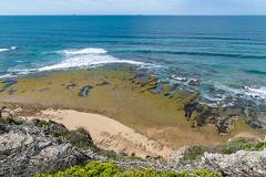 Rocky shelf (palbion) Tags: oceangrove victoria australia