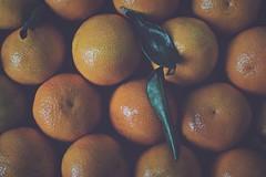 Entre mandarinas... (esterc1) Tags: fruta mandarinas vitaminac naranja fruits crazytuesday