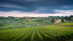 Vineyard and Panzano in Chianti (cedant1) Tags: toscane toscany scenic landscape coutryside sky nikon nikond750 chianti panzano green field vineyards grapes blue clouds longexposure nisicpl nisiv5pro gnd cokingnd bluehour houses village picturesque italy italia italie europe europa
