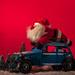 Gib Gas die Zeit bis zum Nikolaustag wir eng!