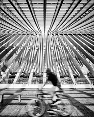 CYCLING IN THE STATION (bhs-photo) Tags: btw noiretblanc monochrome schwarzweis street architecture station guillemens leica leicaq