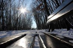 Cold Sun (JULIANA LEFTEROVA) Tags: winter winterscene park snow bench walkinthepark urbanexploring urbanlandscape sunnyday cold weather seasons chillyweather chill
