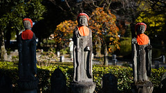 20191116_【Ashikaga snap 写真家と撮り歩き 第2回 大門美奈】_05_5_FOV Classic Yellow (foxfoto_archives) Tags: sigma fp mc21 40mm f14 dg hsm a018 developed by photo pro 670 japan tochigi ashikaga snap 日本 栃木 足利 スナップ