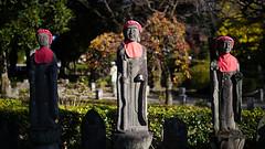 20191116_【Ashikaga snap 写真家と撮り歩き 第2回 大門美奈】_05_1_Standard (foxfoto_archives) Tags: sigma fp mc21 40mm f14 dg hsm a018 developed by photo pro 670 japan tochigi ashikaga snap 日本 栃木 足利 スナップ