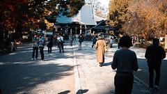 20191116_【Ashikaga snap 写真家と撮り歩き 第2回 大門美奈】_04_3_Teal & Orange (foxfoto_archives) Tags: sigma fp mc21 40mm f14 dg hsm a018 developed by photo pro 670 japan tochigi ashikaga snap 日本 栃木 足利 スナップ