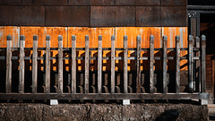 20191116_【Ashikaga snap 写真家と撮り歩き 第2回 大門美奈】_02_3_Teal & Orange (foxfoto_archives) Tags: sigma fp mc21 40mm f14 dg hsm a018 developed by photo pro 670 japan tochigi ashikaga snap 日本 栃木 足利 スナップ