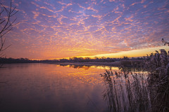 A new day starts in Cambridgeshire (CraDorPhoto) Tags: canon6d sunrise clouds sky colour reflections water lake nature outdoors outside cambridgeshire uk landscape waterscape