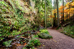 A Trail at Hofgut Sternen_8990 (hkoons) Tags: hofgutsternen southernblackforestnaturereserve clouds germany tree waterfall waterfalls aqueous arbor art babble bloom blossom branch branches brook bud buds canopy cascade color fern flora flower flowing grass grasslands green growth horizon land landscape leaf leaves limb limbs natural nature outdoors panorama quiet river roots sky soil stem stream sun sunshine tranquility trees trunk water
