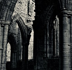 Tintern Winter V (ye sons of art) Tags: tintern abbey ruin church religion heritage history henryviii dissolution winter wales uk monochrome bw