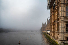 Misty (100 Real People) Tags: nikond750 nikkor35f20 thames river london housesofparliament moody morning light westminster westminsterbridge water boats bridges