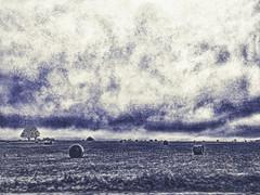 here comes the snow (boriches) Tags: prairie ozarks missouri winter snow storm