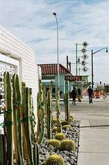 Downtown Las Vegas (Travis Estell) Tags: nevadaonfilm clarkcounty nikonf6 dtlv travelersmotel lasvegas thedarkroomlab nevada kodakportra160 lasvegasonfilm downtownlasvegas fremonteast unitedstates