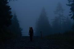 f o g ([ I w a n ]) Tags: berner oberland berneroberland gasterntal kandersteg atmosphere fog rain sonya7ii