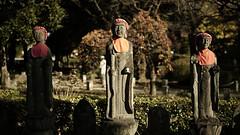 20191116_【Ashikaga snap 写真家と撮り歩き 第2回 大門美奈】_05_2_Cinema (foxfoto_archives) Tags: sigma fp mc21 40mm f14 dg hsm a018 developed by photo pro 670 japan tochigi ashikaga snap 日本 栃木 足利 スナップ