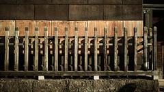 20191116_【Ashikaga snap 写真家と撮り歩き 第2回 大門美奈】_02_2_Cinema (foxfoto_archives) Tags: sigma fp mc21 40mm f14 dg hsm a018 developed by photo pro 670 japan tochigi ashikaga snap 日本 栃木 足利 スナップ