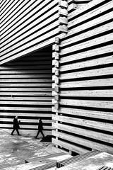 lines (brekna) Tags: street streetphotography streetphoto streetphotobw fujifilm xt1 bw blackandwhite monochrome man minimal human people outdoor lines