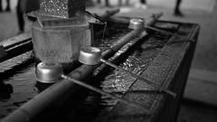 20191116_【Ashikaga snap 写真家と撮り歩き 第2回 大門美奈】_07_6_Monochrome (foxfoto_archives) Tags: sigma fp mc21 40mm f14 dg hsm a018 developed by photo pro 670 japan tochigi ashikaga snap 日本 栃木 足利 スナップ