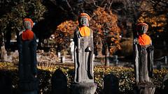 20191116_【Ashikaga snap 写真家と撮り歩き 第2回 大門美奈】_05_3_Teal & Orange (foxfoto_archives) Tags: sigma fp mc21 40mm f14 dg hsm a018 developed by photo pro 670 japan tochigi ashikaga snap 日本 栃木 足利 スナップ