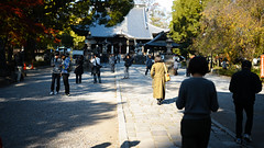 20191116_【Ashikaga snap 写真家と撮り歩き 第2回 大門美奈】_04_5_FOV Classic Yellow (foxfoto_archives) Tags: sigma fp mc21 40mm f14 dg hsm a018 developed by photo pro 670 japan tochigi ashikaga snap 日本 栃木 足利 スナップ